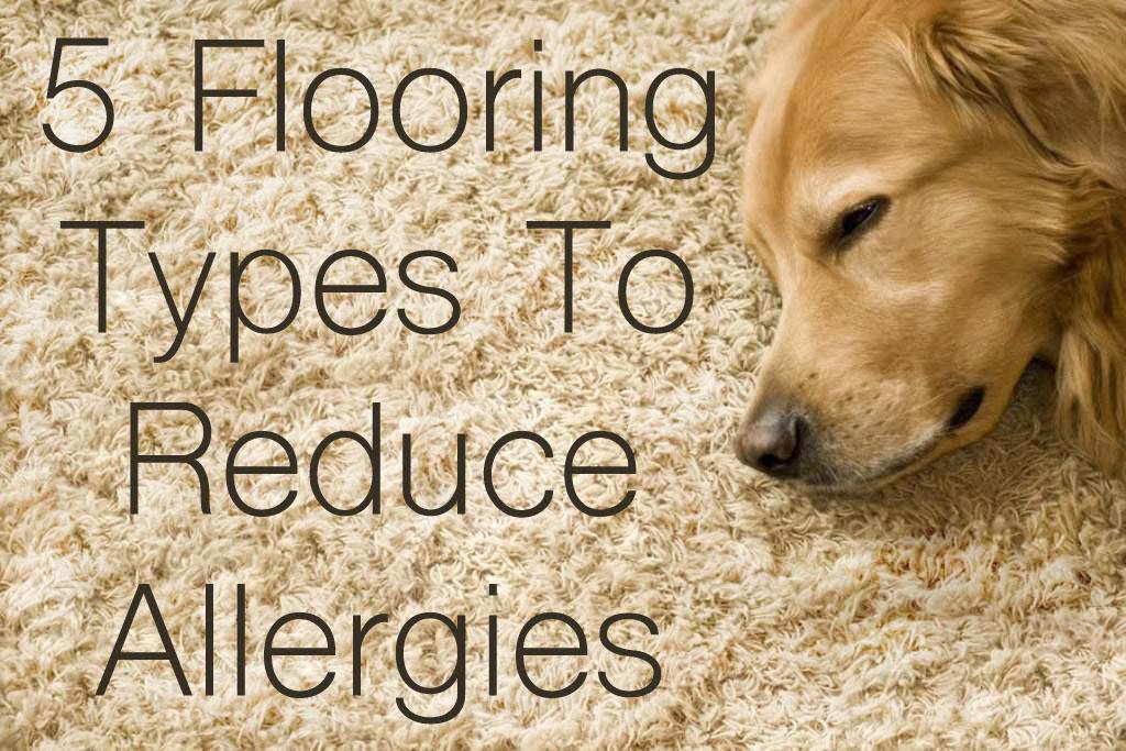 Best Carpet For Allergies Best Carpet Material For Allergies Carpet ...
