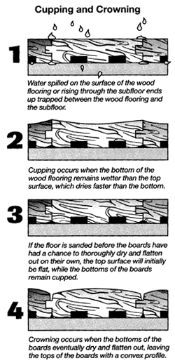 Four steps to protect your hardwood from humidity for Hardwood floors cupping